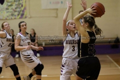 HSGB-JCS-Lady-Tigers-vs-Riverside-1-13-20-AP-SVA-24