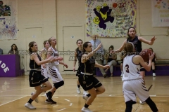 HSGB-JCS-Lady-Tigers-vs-Riverside-1-13-20-AP-SVA-25