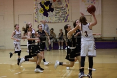 HSGB-JCS-Lady-Tigers-vs-Riverside-1-13-20-AP-SVA-7