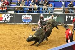 PBR-Bull-Riding-Velocity-Tour-Rupp-Arena-1-25-20-TM-SVA-425