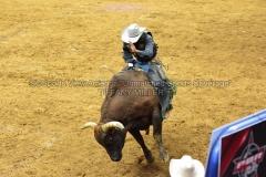 PBR-Bull-Riding-Velocity-Tour-Rupp-Arena-1-25-20-TM-SVA-663