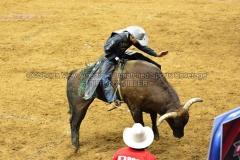 PBR-Bull-Riding-Velocity-Tour-Rupp-Arena-1-25-20-TM-SVA-666