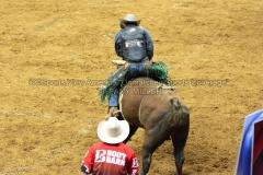 PBR-Bull-Riding-Velocity-Tour-Rupp-Arena-1-25-20-TM-SVA-670