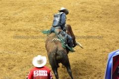 PBR-Bull-Riding-Velocity-Tour-Rupp-Arena-1-25-20-TM-SVA-671