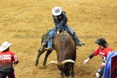 PBR-Bull-Riding-Velocity-Tour-Rupp-Arena-1-25-20-TM-SVA-673