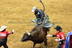 PBR-Bull-Riding-Velocity-Tour-Rupp-Arena-1-25-20-TM-SVA-674