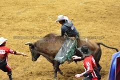 PBR-Bull-Riding-Velocity-Tour-Rupp-Arena-1-25-20-TM-SVA-675