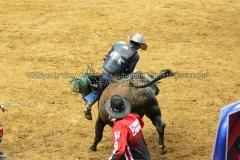 PBR-Bull-Riding-Velocity-Tour-Rupp-Arena-1-25-20-TM-SVA-676