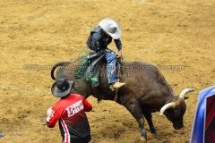 PBR-Bull-Riding-Velocity-Tour-Rupp-Arena-1-25-20-TM-SVA-678