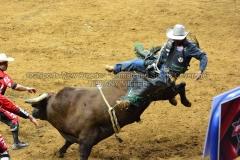 PBR-Bull-Riding-Velocity-Tour-Rupp-Arena-1-25-20-TM-SVA-681