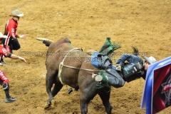 PBR-Bull-Riding-Velocity-Tour-Rupp-Arena-1-25-20-TM-SVA-682