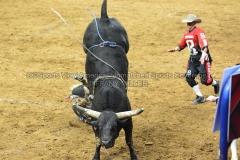 PBR-Bull-Riding-Velocity-Tour-Rupp-Arena-1-25-20-TM-SVA-684